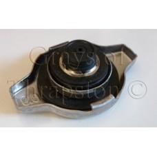 Radiator Cap